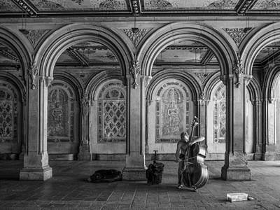 Photograph - The Bass Player by Cornelis Verwaal