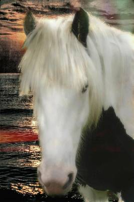 Digital Art - The Beautiful Face Of A Gypsy Vanner Horse by Rusty R Smith