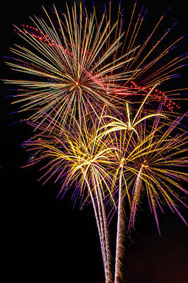 Photograph - The Beauty Of Fireworks by Garry Gay