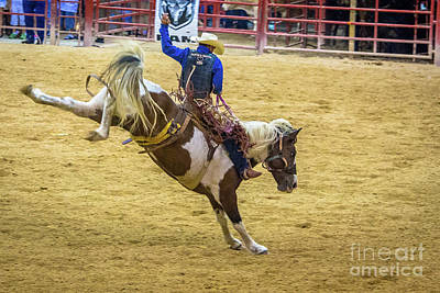 Photograph - The Bucking Horse by Rene Triay Photography