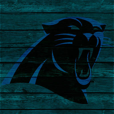 Newton Mixed Media - The Carolina Panthers 2a by Brian Reaves
