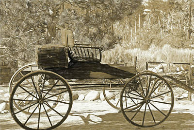 Photograph - The Cart Before The Horse by Donna Kennedy