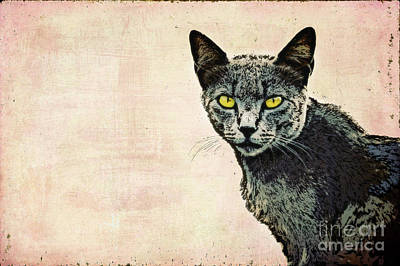 Watercolor Pet Portraits Digital Art - The Cat by Angela Doelling AD DESIGN Photo and PhotoArt