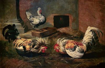 Frans Snyders Painting - The Coop by Frans Snyders