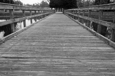 Photograph - The Dock by Michael Tesar