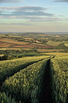 Photograph - The Exe Valley by Pete Hemington
