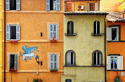 Photograph - The Flying Donkey by Fabrizio Troiani