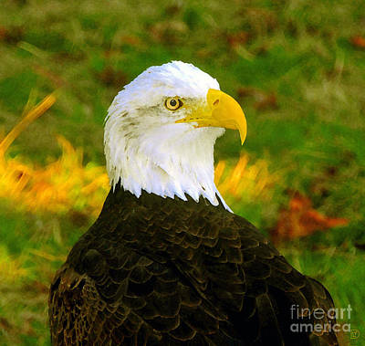 Pride Painting - The Great Bald Eagle by David Lee Thompson