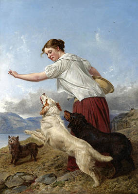 Painting - The Highland Lassie by Richard Ansdell