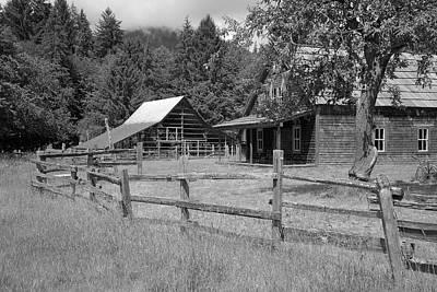 Photograph - The Homestead by Richard J Cassato
