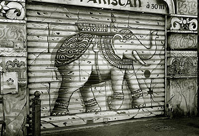 Photograph - The Indian Elephant by Shaun Higson
