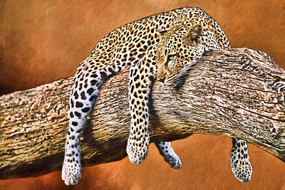 Photograph - The Leopard by Ericamaxine Price