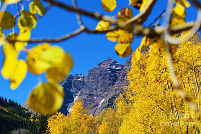 Photograph - The Maroon Bells by Kate Avery