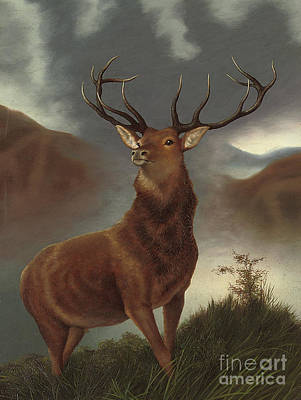 Stag Painting - The Monarch Of The Glen by Edwin Landseer