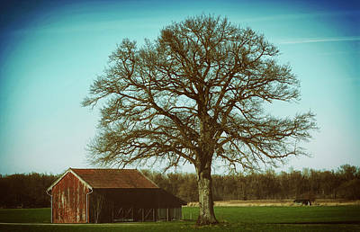Photograph - The Old Barn by Manfred Antranias