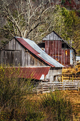 Kentucky Horse Park Photograph - The Old Farm by Debra and Dave Vanderlaan