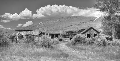 Photograph - The Old Neighborhood by Richard J Cassato