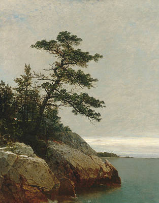 Connecticut Landscape Painting - The Old Pine Darien Connecticut by John Frederick Kensett