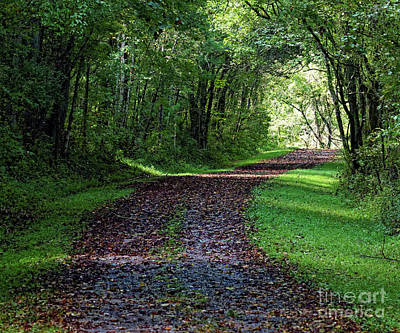 Photograph - The Old Road by Paul Mashburn