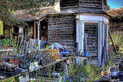 The Old Shed Art Print by David Patterson