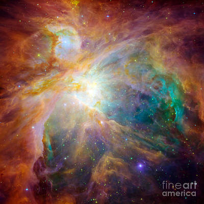 Photograph - The Orion Nebula by Stocktrek Images