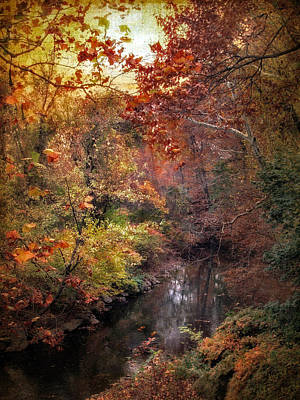 Autumn Leaf Photograph - The Overlook  by Jessica Jenney