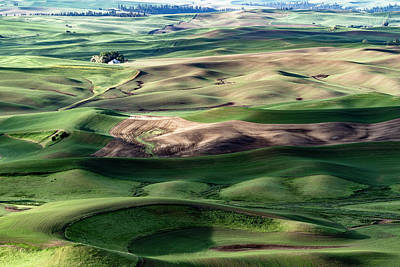 Photograph - The Palouse by Joe Paul