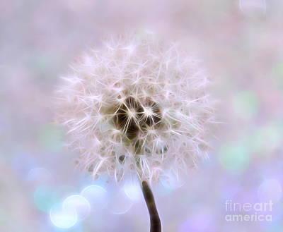 Floral Digital Art Digital Art - The Perfect Wish by Krissy Katsimbras
