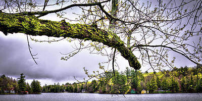 Photograph - The Pond In Old Forge by David Patterson