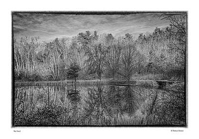 Photograph - The Pond by R Thomas Berner