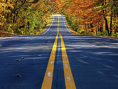 Autumn Road Photograph - The Road by Phil Koch