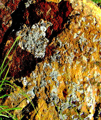 Art Print featuring the photograph The Rock by Lenore Senior