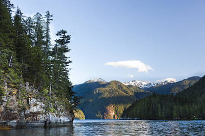 The Rugged, Rocky Forested Shoreline Art Print by Taylor S. Kennedy