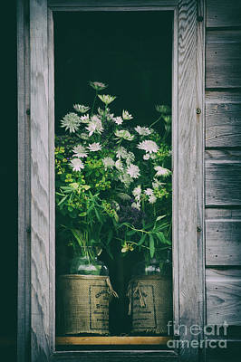 Flower Gardens Photograph - The Shed by Tim Gainey