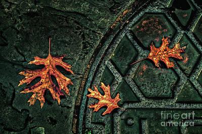 The Three Leaves Art Print