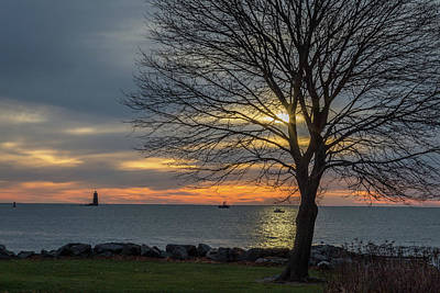 Lighthouse Photograph - The Tree by Scott Patterson