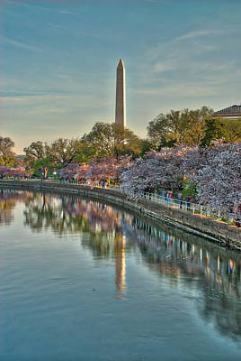 Photograph - The Washington Monument And The Cherry Blossoms by Mark Dodd