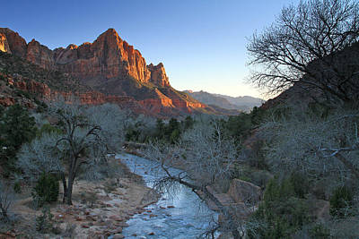 Photograph - The Watchman by Ed  Riche