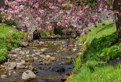 Photograph - The Wee Bridge In Dollar, Clackmannanshire by Jeremy Lavender Photography