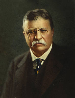 Theodore Photograph - Theodore Roosevelt - President Of The United States by International  Images