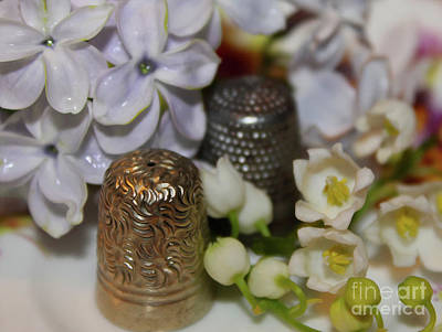 Photograph - Thimbles Of Spring by Nina Silver