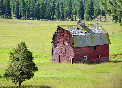 Photograph - This Old Barn by Whispering Peaks Photography