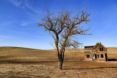 Photograph - This Old House by Steve McKinzie