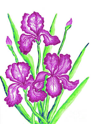 Painting - Three Pink Irises by Irina Afonskaya
