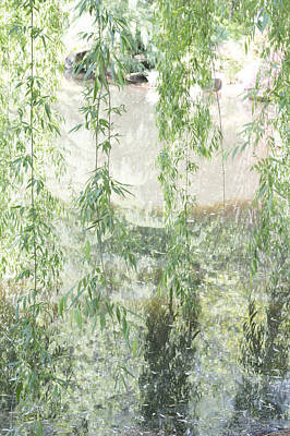 Through The Willows Art Print by Linda Geiger