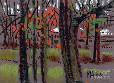 Thru The Trees Art Print by Donald Maier