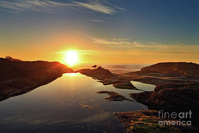 Photograph - Tidal Pools by Beve Brown-Clark Photography
