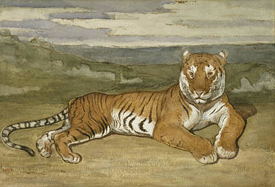 Drawing - Tiger At Rest  by Antoine-Louis Barye