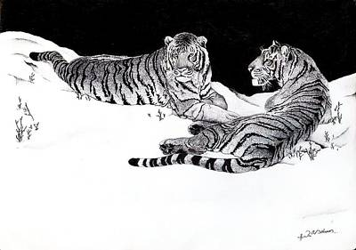 Tigers In The Snow Art Print by Hari Mohan