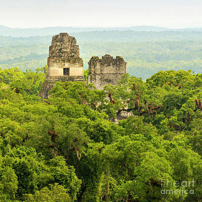 Photograph - Tikal National Park Guatemala by Tim Hester